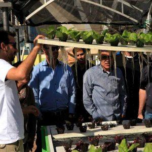 קורס הידרופוניקה מקיף לחקלאי המסחרי