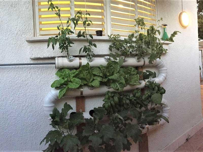 תעלות גידול הידרופוניות מתחת לחלון. מערכת בשיטת עשה זאת בעצמך