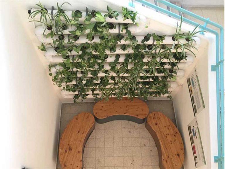 קיר ירוק במבואה בבית הספר