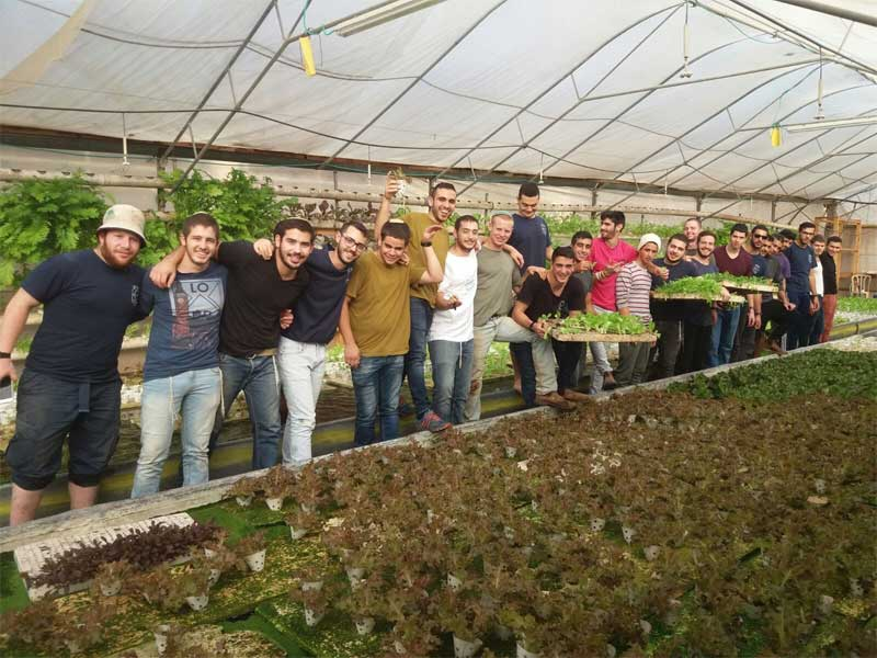 Local-Agriculture-tour2-Green-in-the-village