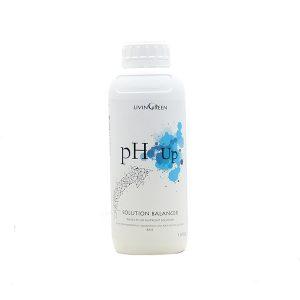מגביר בסיסיות pH Up