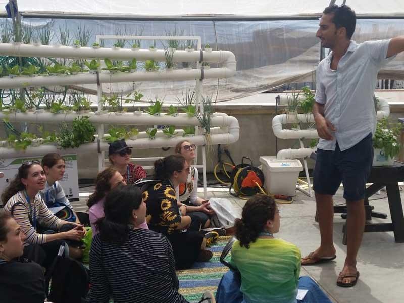Urban-agriculture-tour--Tel-Aviv-LivinGreen
