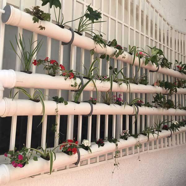 מערכת הידרופונית תלויה על גדר שתולה בצמחי נוי