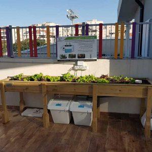Soil less culture for school