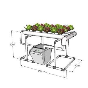 מערכת הידרופוניקה 'אופק', 24 צמחים