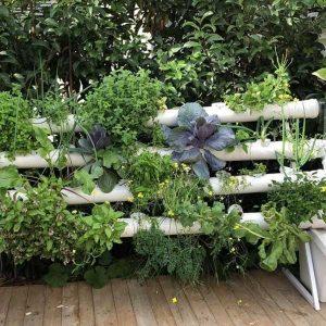 מערכת לגידול הידרופוני ורטיקלי- 'מרום' 44 צמחים