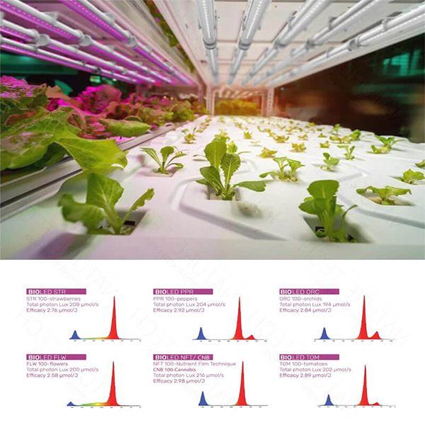 מנורת LED לגידול צמחים - צמיחה, פריחה או ספקטרום