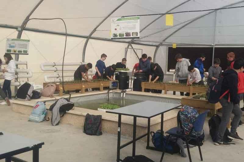 תלמידים במתחם חקלאות מתקדמת לבתי הספר