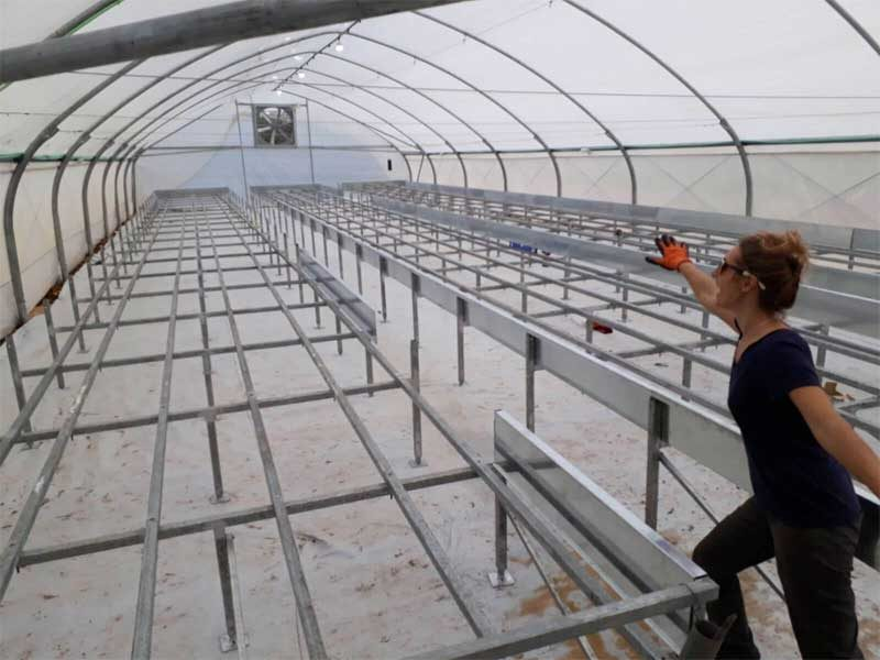 Feasibility-for-hydroponics-farm
